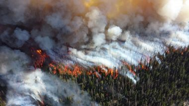 Wildfire and smoke